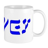 Israel Small Mug (11 oz)