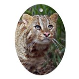 Ornaments Oval Amur Leopard Cat