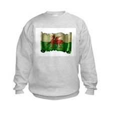 Antique Flag of Wales Sweatshirt
