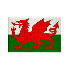 Flag of Wales (Welsh Flag) Rectangle Magnet (10 pa