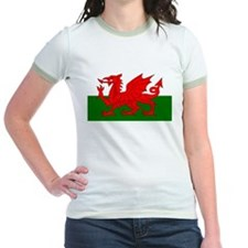 Flag of Wales (Welsh Flag) T