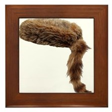 Cool Beaver tail Framed Tile