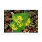 Yellow Flowers On Green Leaves Large Poster