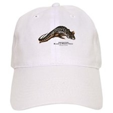 Argentine Black and White Tegu Baseball Cap