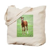 BABY COLTS Tote Bag
