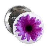 Purple Daisy Button