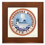 USS Theodore Roosevelt CVN 71 US Navy Ship Framed