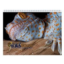 Geckos Unltd Wall Calendar (2010 Contest Photos)