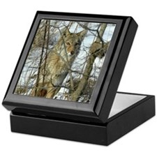Michael Carr's Photo of Coyote Keepsake Box