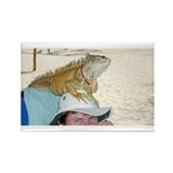 Iguana-Head Rectangle Magnet