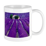Lavender Field Smaller Mug