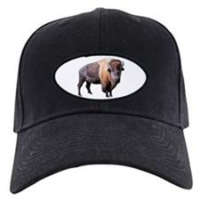 buffalo Baseball Hat