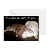 Bunny Anniversary Greeting Cards (Pk of 10)