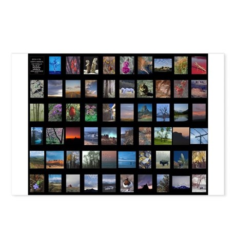 North America, Naturally Postcards (Package o