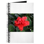 Red Hibiscus Journal