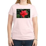 Red Hibiscus Women's Light T-Shirt