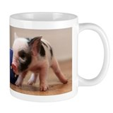 Cute Teacup pigs Mug