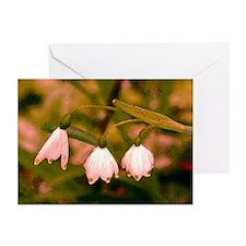 Fine Art Triplet Custom Greeting Cards (Pk of 10)
