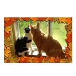 Orange Tabby Cats and Kittens Postcards (Package o