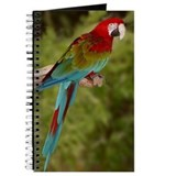 Greenwing Macaw Journal
