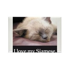 Siamese Cat Rectangle Magnet