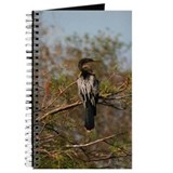 Anhinga Journal