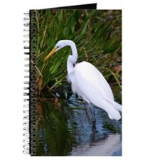 Great White Egret Journal