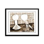 Voorburg Pigeon Pair Framed Panel Print