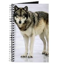 Tristan On Ice Wolf Journal