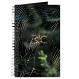 Western Orb Weaver Journal