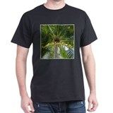 Lava Flow T Shirt