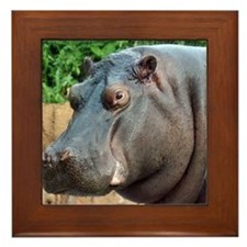 Hippo Two Framed Tile