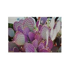 Prickly Pear Cactus Rectangle Magnet