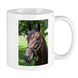 Cute Horse races Mug