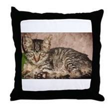stripes the cat Throw Pillow