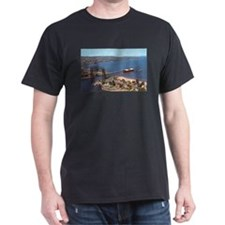 Duluth Harbor T-Shirt