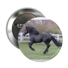 "Unique Friesian 2.25"" Button (100 pack)"