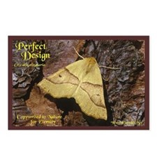 """""""Perfect Design"""" Postcards (Package of 8"""