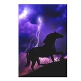 Into the Storm Postcards (Package of 8)