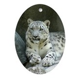 Snow Leopard M005 Oval Ornament