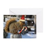 ChristmasSquirrel Greeting Card