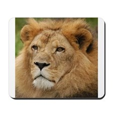 African Lion Mousepad