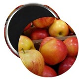 Apple Photo Magnet