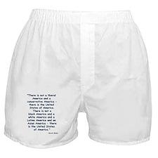 Obama America Boxer Shorts