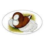 Bokhara Trumpeter Pigeon Oval Sticker