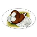 Bokhara Trumpeter Pigeon Oval Sticker (10 pk)