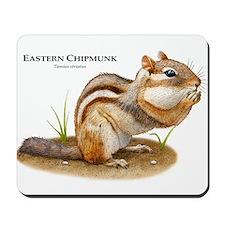 Eastern Chipmunk Mousepad
