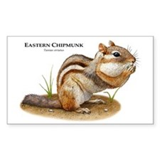Eastern Chipmunk Rectangle Decal