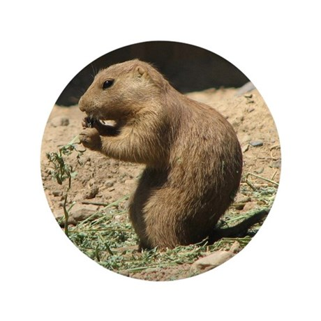"Prairie Dog 3.5"" Button"