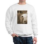 CUTEST DONKEY Sweatshirt